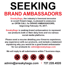 branding statement resume examples brand ambassador resume dalarcon com rpg programmer sample resume