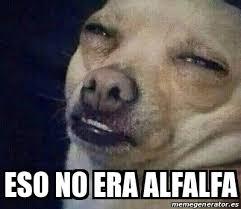 Alfalfa Meme - meme personalizado eso no era alfalfa 14960106