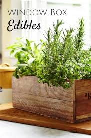 23 best edible ornamentals images on pinterest edible garden