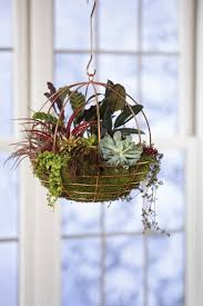 copper wire globe hanging basket air plant terrarium