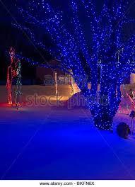 philadelphia christmas tree stock photos u0026 philadelphia christmas