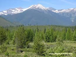 Cabinet Mountains Wilderness The Cabinet Mountains In Northwest Montana Photos Of The