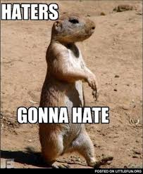 Haters Gonna Hate Meme - littlefun haters gonna hate prairie dog