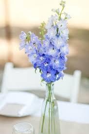 wedding flowers m s 25 best light blue flowers ideas on flowers blue