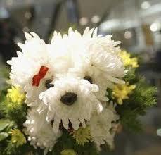 dog flower arrangement diy dog inspired floral arrangements for your pet lover the