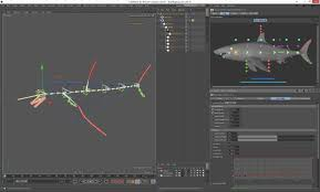fish custom character template for cinema 4d 3d model