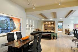 finished basement lighting basement contemporary with natural wood
