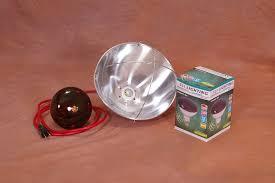 250 watt infrared heat l bulb incubator warehouse incubatorwarehouse brooder l for new birds