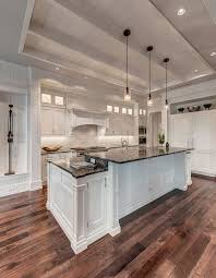 Kitchen Ceiling Lighting Ideas by Best 25 Tray Ceilings Ideas On Pinterest Painted Tray Ceilings