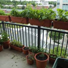 marvellous small balcony container gardening ideas 21 amazing