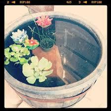 39 best ponds images on pinterest garden ideas pond ideas and