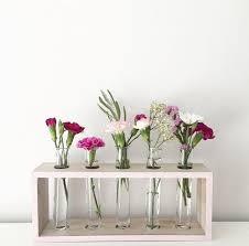 Test Tube Flower Vases Multi Pack Test Tube Vase Gg U0027s Flowers