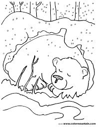 hibernating bear color sheet coloring hibernating animals