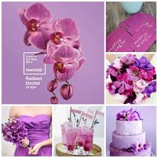 pink pantone pantone color of the year radiant orchid
