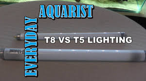 difference between t8 and t5 aquarium lighting explained youtube