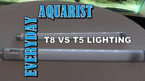 t5 aquarium light fixture difference between t8 and t5 aquarium lighting explained youtube
