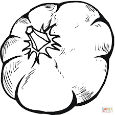 pumpkin 14 coloring page free printable coloring pages