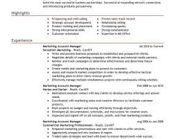 resume awesome it manager resume awesome marvelous things to