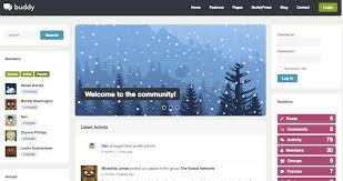 23 best wordpress forum themes bbpress u0026 support templates 2016