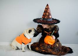 spirit halloween jumping dog 10 halloween costume ideas for kids u0026 their pets that you u0027ll be