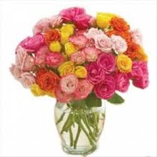 multicolored roses multicolored roses 50 at best prices in india archiesonline