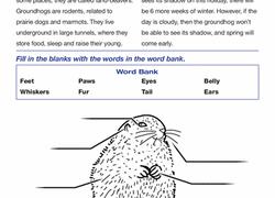 plants animals u0026 the earth worksheets u0026 free printables page 6