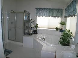 Bathtub Shower Ideas Bathroom Bathroom Ideas On A Budget Small Bathroom Decorating