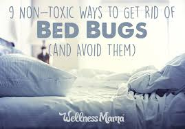 How To Avoid Bed Bugs How To Get Rid Of Bed Bugs 9 Non Toxic Options Wellness Mama