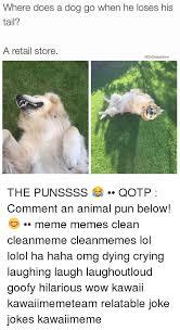 Animal Pun Meme - 25 best memes about animals puns animals puns memes