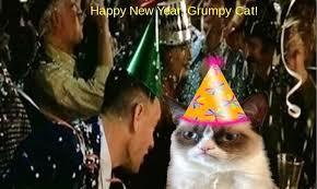 Grumpy Cat New Years Meme - jimmyfungus com the best of grumpy cat the best grumpy cat memes
