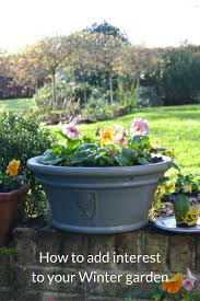 how to add interest to your winter garden growing family