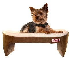 amazon com lap cozy pet bed for small dogs cats and other small