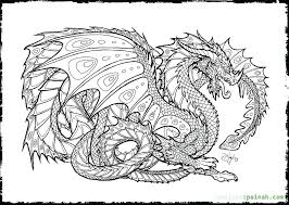 dragon coloring pages info dragon coloring pages printable dragon adult coloring pages free