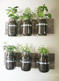 plante cuisine decoration jar wall planter jardins jardinage et plantes