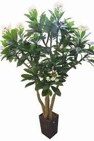 plants fake plant tree images fake pot plant christmas tree