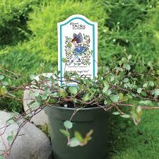 flower and vegetable planting tips sturtz u0026 copeland garden blog