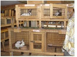 Stackable Rabbit Hutches Outdoor Rabbit Hutch Plans Myoutdoorplans Free Woodworking Home 17