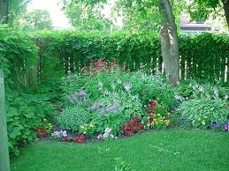 63 best shade gardens images on pinterest garden ideas shade
