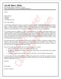 career letter sample chief diversity officer cover letter sample by cando career coaching