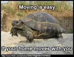Meme Moving - moving puns