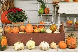 Fall Harvest Decorating Ideas - fall harvest decor entry traditional with seasonal decor indoor