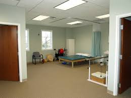 the dizziness and balance center home