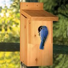 44 best birdhouse woodcraft patterns images on