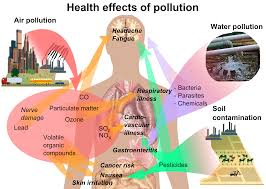 pollution wikiwand
