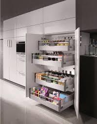 corner kitchen pantry cabinet ideas 50 creative kitchen pantry ideas and designs renoguide