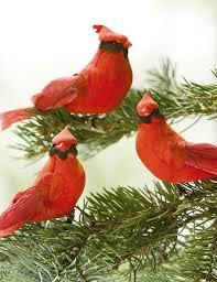 cardinal ornaments gardener s supply