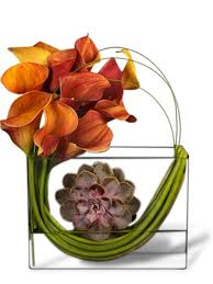 Calla Lily Flower Delivery - calla lily and succulent arrangement jupiter flower delivery