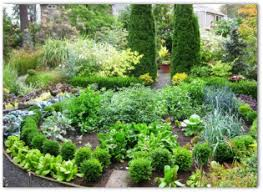 How To Plan A Garden Layout Layout Plans Free