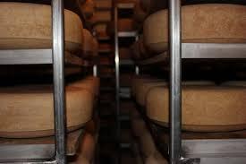 uplands cheese old world farming award winning cheese