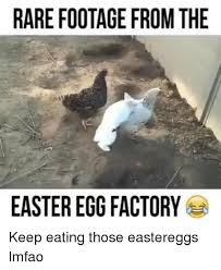 Easter Egg Meme - rare footage from the easter egg factory keep eating those